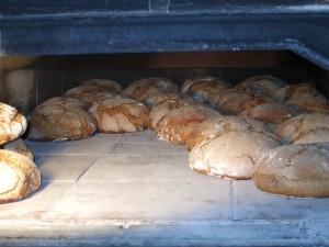 Brot - frisch aus dem Ofen